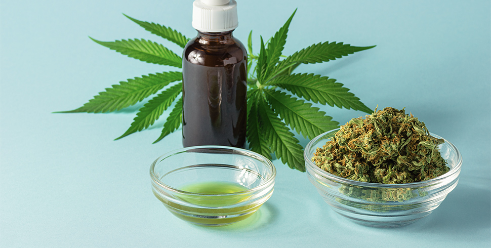CBD Oil Intake You Should Know These 4 Tips